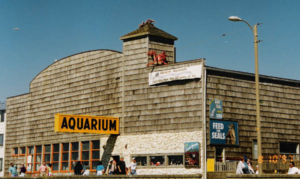 Seaside Aquarium 1997